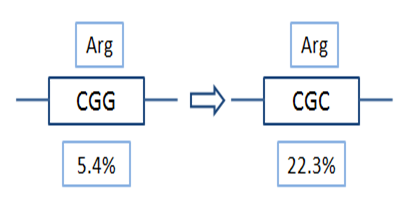 Codon optimization case study